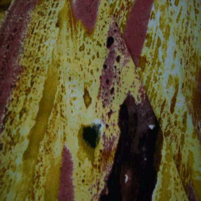 Microfibre imprime camaieu de safran et rose7