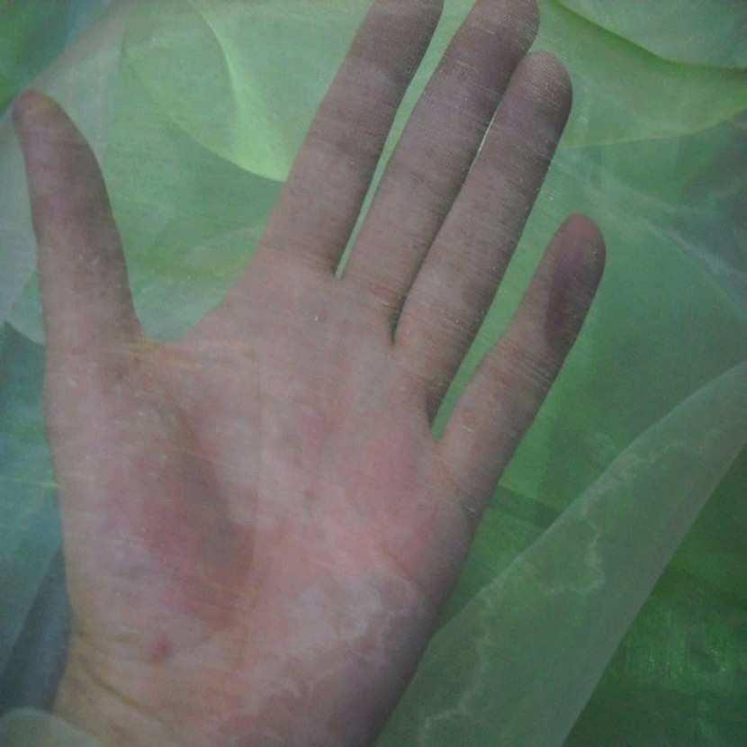Organza changeant vert bambou reflets blanc en 1 5m de large2
